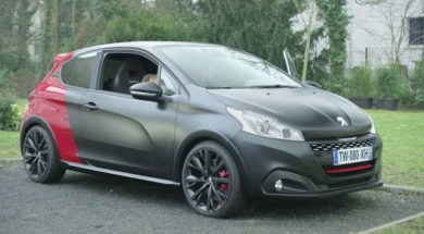 Pub : Peugeot 208 GTi  » THE DOG «
