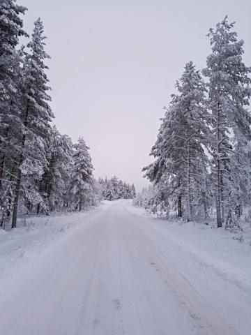 De la neige pour notre plus grande joie