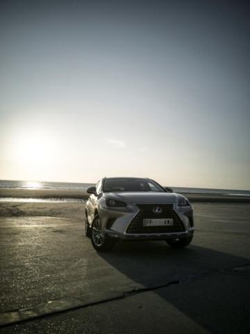 Coucher de soleil pour auto du soleil levant - Lexus NX300H, Premium hybridus